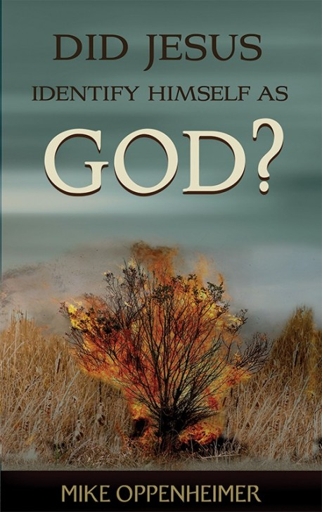 PDF BOOKLET - Did Jesus Identify Himself as God?